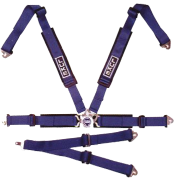 6 Point Harness (With Double Crutch Strap)